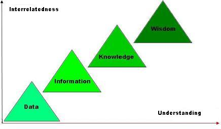 Data-Information-Knowledge-Wisdom Model